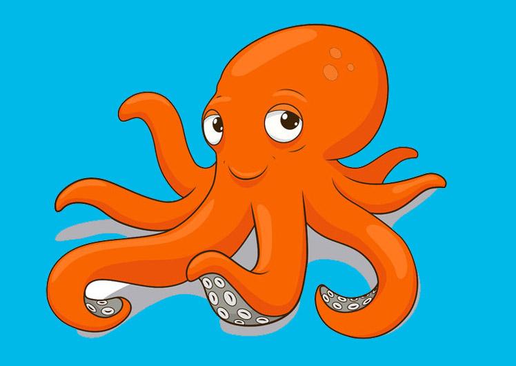 octopus_748x530px
